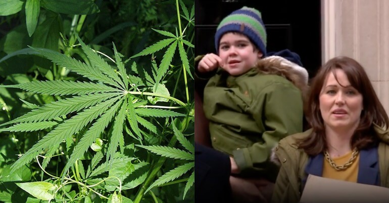 Cannabis (left) Alfie Dingley